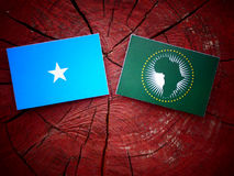 Somalian flag with African Union flag on a tree stump royalty free stock photo