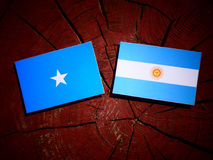 Somalian flag with Argentinian flag on a tree stump royalty free stock photo