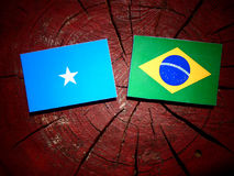 Somalian flag with Brazilian flag on a tree stump isolated. Somalian flag with Brazilian flag on a tree stump Stock Photos