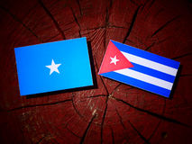 Somalian flag with Cuban flag on a tree stump isolated. Somalian flag with Cuban flag on a tree stump royalty free stock images