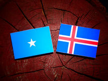 Somalian flag with Icelandic flag on a tree stump isolated. Somalian flag with Icelandic flag on a tree stump Royalty Free Stock Photography
