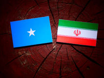 Somalian flag with Iranian flag on a tree stump isolated. Somalian flag with Iranian flag on a tree stump Stock Photo