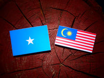 Somalian flag with Malaysian flag on a tree stump isolated. Somalian flag with Malaysian flag on a tree stump Royalty Free Stock Images