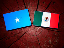 Somalian flag with Mexican flag on a tree stump isolated. Somalian flag with Mexican flag on a tree stump Royalty Free Stock Photo