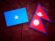 Somalian flag with Nepali flag on a tree stump isolated. Somalian flag with Nepali flag on a tree stump stock images
