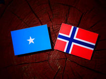 Somalian flag with Norwegian flag on a tree stump isolated. Somalian flag with Norwegian flag on a tree stump stock image