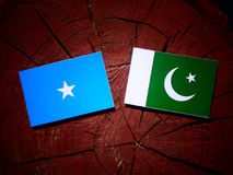Somalian flag with Pakistan flag on a tree stump isolated. Somalian flag with Pakistan flag on a tree stump Royalty Free Stock Photography