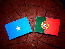 Somalian flag with Portuguese flag on a tree stump isolated. Somalian flag with Portuguese flag on a tree stump Royalty Free Stock Photos