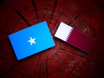 Somalian flag with Qatari flag on a tree stump isolated. Somalian flag with Qatari flag on a tree stump Stock Image