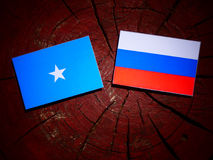 Somalian flag with Russian flag on a tree stump  Royalty Free Stock Images