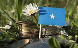 Somalian flag with stack of money coins with grass. And flowers Stock Images