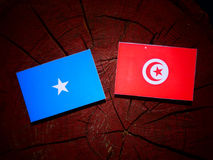 Somalian flag with Tunisian flag on a tree stump isolated. Somalian flag with Tunisian flag on a tree stump Stock Photo