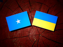 Somalian flag with Ukrainian flag on a tree stump isolated. Somalian flag with Ukrainian flag on a tree stump Royalty Free Stock Images