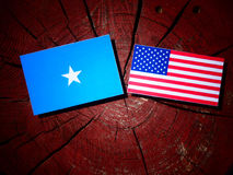 Somalian flag with USA flag on a tree stump Royalty Free Stock Photo