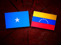 Somalian. Flag with Venezuelan flag on a tree stump Royalty Free Stock Photos