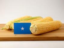Somalian flaga na drewnianym panelu z kukurudzą odizolowywającą na biali półdupki fotografia royalty free