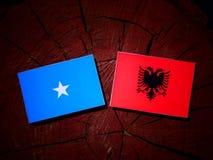 Somalian flaga z albańczyk flaga na drzewnym fiszorku obrazy royalty free