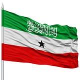 Somaliland Flag on Flagpole. Flying in the Wind, Isolated on White Background stock photo
