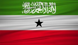 Somaliland flag vector. Vector flag of Somaliland blowig in the wind. EPS 10 Stock Images