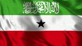 Somaliland Zaznacza 30 fps flaga Somaliland falowanie w wiatrze - Realistyczny 4K - royalty ilustracja