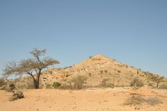 Somalisk ladscape Royaltyfria Bilder