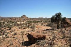 Somalisk ladscape Royaltyfri Foto