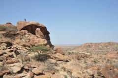 Somalisk ladscape Arkivfoton