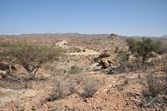 Somalisk ladscape Royaltyfri Fotografi