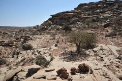 Somalisk ladscape Arkivbilder