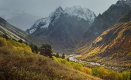 Somber autumn. This is somber morning in Caucasus mountains in fall Royalty Free Stock Photo