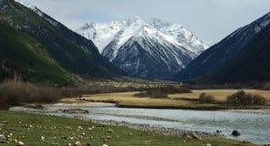 Somber Caucasus Stock Image