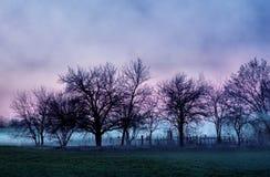 Somber landschap met oude begraafplaats Royalty-vrije Stock Fotografie