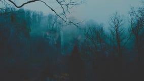 Somber mistig bos in de bergen Vanaf de bergbovenkanten stroomt een waterval neer van een bergrivier Sinistere droevig stock videobeelden