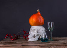 Somber stilleven met schedel, pompoen, lijsterbessen en reageerbuizenwi Stock Foto