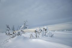 Sombere de winterdag Stock Foto