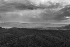 Sombere hemel en boslandschap Royalty-vrije Stock Foto's