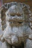 Sombere Leeuw stock afbeelding