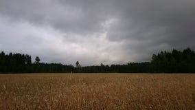 Sombere wolken Royalty-vrije Stock Foto's