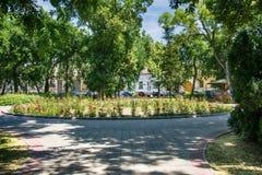 Flower park in Sombor. Sombor, Serbia July 14, 2017: flower park in Sombor Stock Images