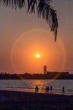 Sombra bonita do nascer do sol tropical Foto de Stock Royalty Free
