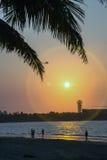Sombra bonita do nascer do sol tropical Fotos de Stock Royalty Free