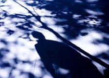 Sombra borrosa de un hombre y de un árbol Fotografía de archivo libre de regalías