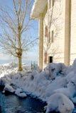 Sombra da árvore na casa Imagens de Stock