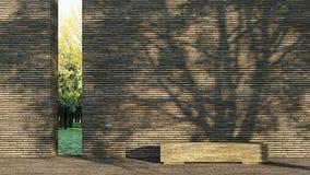 Sombra da árvore na parede Fotos de Stock Royalty Free
