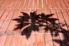Sombra da árvore no assoalho de madeira foto de stock royalty free