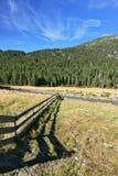 A sombra da baixa cerca encontra-se na grama Imagem de Stock Royalty Free