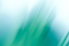 Sombra da grama Imagens de Stock