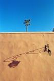sombra da palma da parede fotografia de stock
