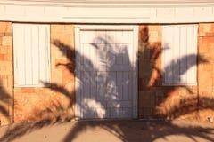 Sombra da palmeira Fotografia de Stock