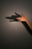 Sombra da silhueta dos anubis Foto de Stock